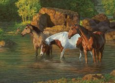 Home Decor - Wall Art - Page 5 - Acres Country Store Horse Artwork, Horse Paintings, Cowboy Art, Horse Photos, Equine Art, Horse Love, Western Art, Art Pages, Beautiful Horses