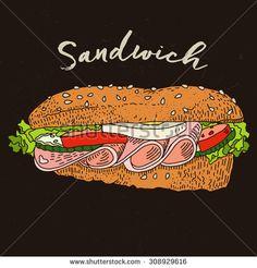 sandwich illustration