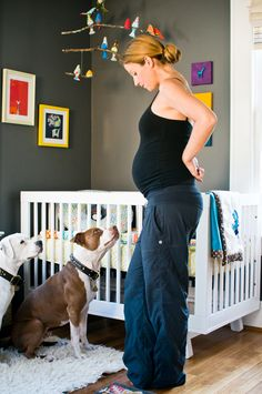 Got fur babies? Read this cute post for ideas on how to prepare them for #baby!