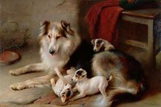 Collie With Fox Terrier Pups by Walter Hunt (1861-1941)