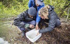 three people look into bin at lakeshore