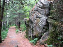 Spruce Bog Boardwalk Trail Algonquin park