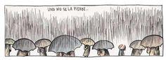 Liniers - Enriqueta en lluvia :)