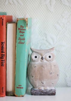 athena's faithful owl figurine at ShopRuche.com  Book-ends!!