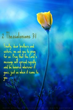 2 Thessalonians 3:1 Finally, dear brothers and sisters, we ask you to pray for us. Pray that the Lord's message will spread rapidly and be honored wherever it goes, just as when it came to you.