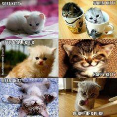 Sleepy kitty, warm kitty, little ball of fun, happy kitty, sleepy kitty, pur pur pur