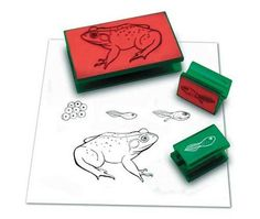 FROG LIFE CYCLE STAMP Learning Resources http://www.amazon.com/dp/B000FHC97K/ref=cm_sw_r_pi_dp_PsGywb0VKKA4T