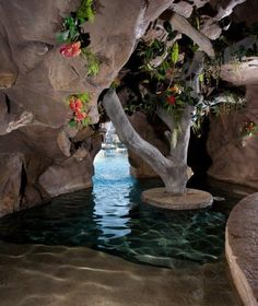 "Swimming pool ""Grotto"" underneath the waterfall..."