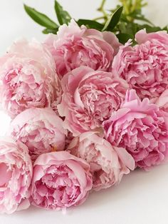 Pink peonies, so beautiful I can imagine the fragrance just from seeing the photo.