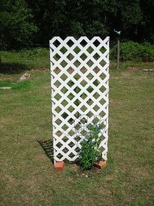 Google Image Result for http://img.ehowcdn.com/article-new/ehow/images/a04/qd/fl/build-simple-pvc-trellis-800x800.jpg