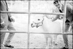 Nate  October 8, 2011  Leica M7 And his miniature horse.