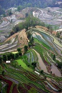 /\ /\ . 云南 元阳梯田 老虎嘴  Yuanyang terraced fields in the Yunnan Province