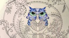 Hi guys in this video I will be coloring the second owl from Enchanted Forest Coloring Book by using Prismacolor Premier Colored Woodcase Pencils. I hope you...