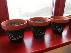 Handmade flowerpots with blackboard paint and chalk