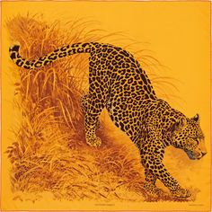 La Maison des Carrés Hermès | Panthera Pardus