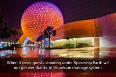 Silly Things You Wouldn't Know about Disney Theme Parks (50 pics) - Izismile.com