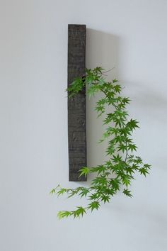 What Are 11 Key Features Of Japanese Interior Design Ikebana Flower Arrangement, Floral Arrangements, Ikebana Arrangements, Ideas Para Decorar Jardines, Garden Art, Garden Design, Arreglos Ikebana, Fleur Design, Japanese Interior Design