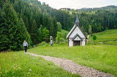 Die Region - johannesweg Country Roads, Plants, Landscaping, Hiking, Destinations, Viajes, Plant, Planets