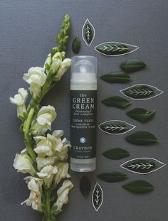 Simple Luxury : Graydon Skincare favorites and new GIVEAWAY! - Care - Skin care , beauty ideas and skin care tips Organic Beauty, Organic Skin Care, Natural Beauty, Natural Hair Styles, Green Beauty Routine, Beauty Routines, Photography Tips, Product Photography, Backlight Photography