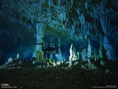 Blue Hole Diving on Grand Bahama Island Underwater Caves, Underwater Photos, Bahamas Island, Best Scuba Diving, Blue Hole, Cave Diving, Paradise Island, National Geographic, Adventure