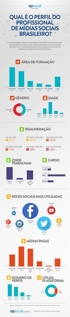 Perfil do profissional de Mídias Sociais no Brasil em 2013 - via OpSocial.com.br