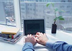 5 maneiras para as seguradoras acelerarem sua estratégia digital