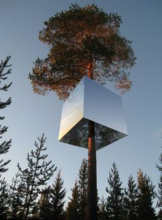The Mirror-cube Treehotel in Sweden. It consists of a lightweight aluminum structure hung from a single tree.