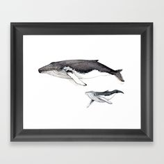 North Atlantic Humpback whale with calf Framed Art Print by chloeyzoard Wall Prints, Framed Art Prints, Calf Tattoo, Humpback Whale, Kids Bath, Wood Canvas, Art Drawings Sketches, Sea Creatures, Under The Sea