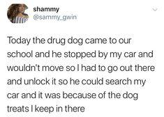 This drug dog's best friend:
