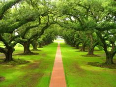 Google Image Result for http://www.funmag.org/wp-content/uploads/2012/12/beautiful-green-nature-02.jpg