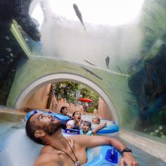 Adventure Cove Waterpark Singapore - Family Travel Blog | Morgans Go Travelling