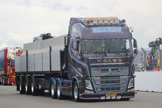 Stunning FH, owned by Edwin Salari.