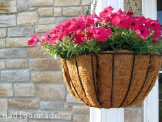 10 Gardening Mistakes I Dont Want You to Make. ~ Madigan Made { simple DIY ideas }