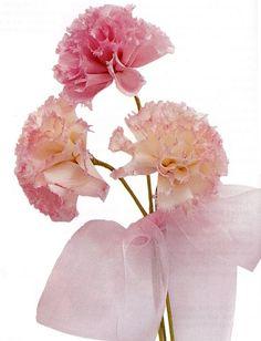 делаем цветы гвоздики из лент
