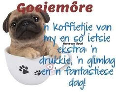 Good Morning Wishes, Good Morning Quotes, Cute Quotes, Funny Quotes, Lekker Dag, Afrikaanse Quotes, Goeie More, Special Quotes, My Sister