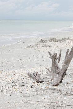 Natural beach / driftwood Sunset Beach, Beach Bum, Blue Beach, Beach Trip, Driftwood Beach, Waves, Am Meer, Florida Travel, Beach Cottages