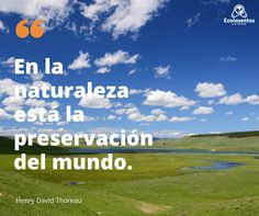 En la naturaleza esta la preservación del mundo.
