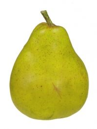 Pear 4 in. Green & other fruit.