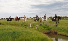 Centre Hippique de la Mer à Les Moutiers-en-Retz : Balade à cheval pour 2 ou 4: #LESMOUTIERS-EN-RETZ 39.90€ au lieu de 80.00€ (50% de…