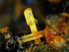 Fluorapatite. Dellen, Mendig, Laacher See, Eifel, Rheinland-Pfalz, Deutschland Taille=3 mm Copyright Heinrich Weber
