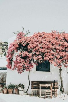 days of camille: trip in greece: les cyclades - paros The Places Youll Go, Places To Visit, Beautiful World, Beautiful Places, Beaux Villages, Adventure Is Out There, Belle Photo, Scenery, Around The Worlds