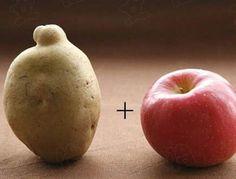 【居家必備的小常識】 馬鈴薯旁邊放顆蘋果,可以延遲發芽。  看更多常識→http://goo.gl/HjLrZo