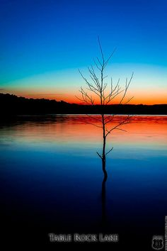This is a gorgeous Art Print of Sunset and Tree Silhouette overlooking Table Rock Lake in Missouri at Dusk near Shell Knob, MO. Artistic Photography, Nature Photography, Photography Tips, Photography Courses, Landscape Photography, Portrait Photography, Photography Studios, Wedding Photography, Photography Challenge