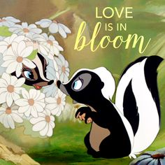 Bambi: Love is in bloom Disney Love, Disney Magic, Disney Pixar, Walt Disney, Disney Characters, Disney Cartoons, Bambi And Thumper, Bambi 1, Walter Elias Disney