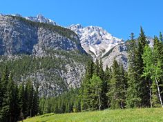 Hiking trail between Lower Bankhead and Cascade Ponds in Banff National Park, Alberta, Canada #hiking