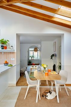 Real home: this kitchen extension is perfect for pets | Real Homes