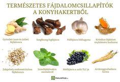 Gyógynövények alkalmazása, Gyűjtése - Fizikai és lelki gyógyulás Doterra, Good To Know, Cantaloupe, Healthy Lifestyle, Garlic, Health Care, Health Fitness, Beef, Healthy Recipes