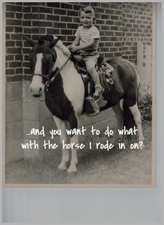 and you want to do what with the horse I rode in on? My Ride, Horses, Memes, Movie Posters, Pictures, Photos, Film Poster, Popcorn Posters, Horse