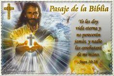 Vidas Santas: Santo Evangelio según san Juan 10:28