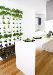 Jardín vertical para plantas aromáticas